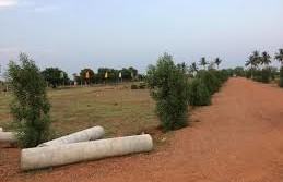 BUY OPEN LAND IN NELLORE CITY