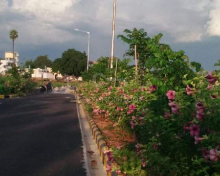 Plot-for-Sale-in-Kollur-Hyderabad-at-Green-City-Dukes-County-Listing-Photo_Side-View