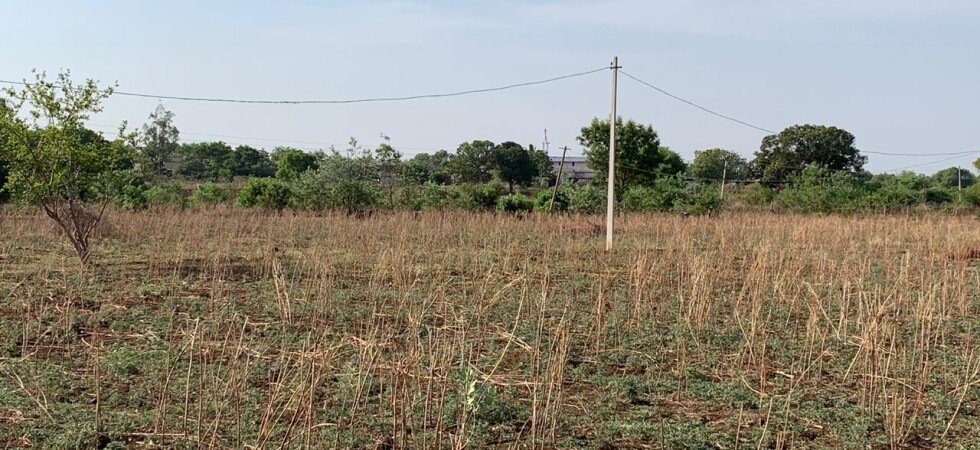 6 acres for sale  at zaheerabad