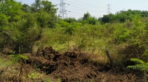 2 acres land for sale at shankarpally