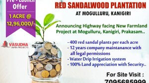 Farmland for sale in ongole
