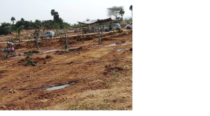 Residential plot for sale in ongole