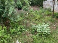 Residential land for sale in Nellore