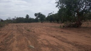 1214 acers land for sale at Choutuppal