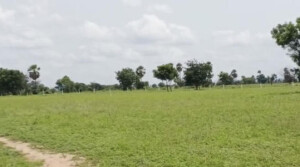 4acres Land for sale in veliminedu near choutuppal